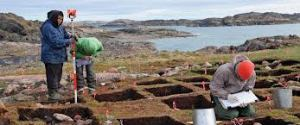 Many archaeological remains exposed Vikings in Greenland.