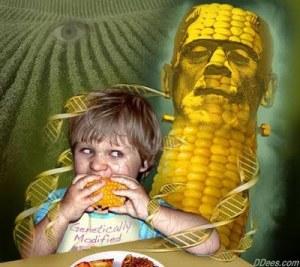 Monsanto...le monstre qui nous détruit de l'intérieur.