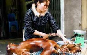 Sans commentaire...moi qui aime tellement  les animaux ...vivants!