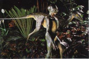 """Pendant de nombreuses années,je me suis intéressé à la paléontologie...et mon plus grand étonnement fut ce travail exécuté par un grand savant américain. Un squelette d'un nouveau type de dinosaure fut retrouvé dans les années '70 et quelques années plus trd,aidé par un des premiers ordinateurs personnels en fonction,il chercha à évaluer l'évolution possible de cette nouvelle trouvaille. Ce dinosaure apparu vers la fin du crétacé (juste avant l'arrivée du """"grand Météore"""" et l'extinction massive qui en suivit) montrait une vision périphérique ...contrairement à la vision latérale des dinosaures connus alors. Aussi,une étude de sa boite cranienne montrait une nette augmentation du volume interne ,soit de la masse cérébrale et qui plus est,possédait une station debout. Donc,si Chixulub ne tombe pas sur Terre,l'évolution de ce petit dinosaure aurait très probablement donné une forme de vie intelligente...reptilienne! ...et nous n'aurions probablement jamais existés ...dans cette vie! C'est de ce dinosaure que  je  parle,ici,dans mon article."""