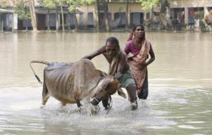 Le Bangla Desh est continuellement en problèmes climatiques.