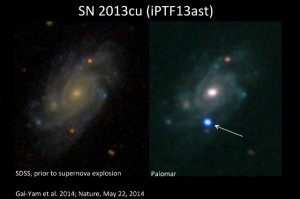Crédit photo:  Avishay Gal-Yam, Institut Weizmann des sciences. A gauche: image de la galaxie UGC 9739 du Sloan Digital Sky Survey (SDSS). Droite: Une tache bleu vif qui a marqué l'explosion d'une supernova.  Read more at http://www.iflscience.com/space/astronomers-capture-rare-wolf-rayet-star-just-hours-after-it-dramatically-explodes