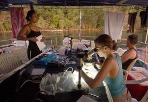 Au crépuscule, sur le pont supérieur du M / V Chertan, biologiste Anna Kluibenschedl, au microscope, les documents la vie marine qui poussent sur une tuile retirée du récif au large de l'île Normanby.