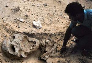 A Gargayan, dans la province nord des Philippines, on a trouvé le squelette d'un géant qui ne mesurait pas moins de 5,18 m. Ses incisives avaient 7,5 cm de longueur et 5 cm de largeur.