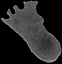 En 1961, en France, sur le plateau de Daüs de la commune d'Ailhon situé en Ardèche, une empreinte d'humanoïde a été découverte à proximité d'empreintes de dinosaures dans du grès du trias moyen ( environ 220 millions d'années ).  Selon l'Abbé Albert F. de Lapparent, la déformation serait due à une surface portante abondamment imbibée d'eau, une boue trop liquide.  Relevé effectué par M. P. Bellin