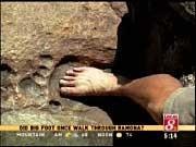 En février 2002  James Snyder, un habitant de la région de Ramona, a fait cette découverte étonnante lors d'une balade dans la forêt nationale de Cleveland.  En sortant des sentiers battus à la recherche d'or dans le massif de Gowers, Snyder est tombé sur une empreinte géante de pied fossile dans la roche granitique de ce qui a sans doute été un cours d'eau il y a longtemps... très longtemps...  Snyder, qui pense qu'il pourrait s'agir de l'empreinte d'un