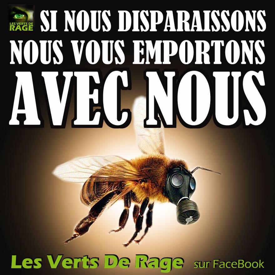 extinction des abeilles