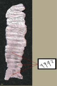Les Rouleaux d'Argent ( ou Les amulettes de Ketef Hinnom ) découvert en 1979 , date de 625 av J-C ( Lien 1 , lien 2 )Sur un rouleau on peut lire le nom de Dieu écrit trois fois YHWH ( se lit de gauche a droite sur l'image   )