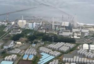 Plus de 1,100 réservoirs ont été érigé autour de la centrale de Fukushima Daiichi...afin de stocker les énormes quantités d'eau irradiée.
