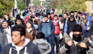 En slovénie,les migrants syriens et irakiens arrivent par milliers.