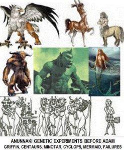 Les  expériences sur des races terrestres avant la réussite de l'homo sapiens.