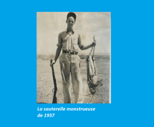 Ceci est une vraie photo de 1937 d'un homme dans le Midwest américain, après avoir abattu une sauterelle hors de l'ordinaire.