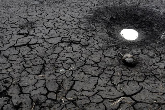 Terres arides à Tegucigalpa (Honduras) © Orlando Sierra - AFP